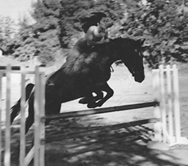 """Elizabeth and her first horse, """"Arapaho Dancer"""" aka """"Cindy."""" Don't try this at home!"""
